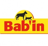 BAB`IN