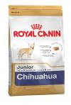 Chihuahua Junior (Чихуахуа Юниор)