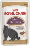 British Shorthair Adult (в соусе)